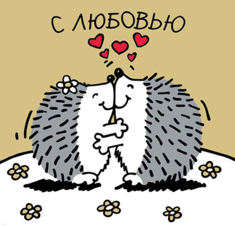День святого валентина открытка с ежиком, картинки про