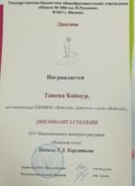 Диплом - студия Анима