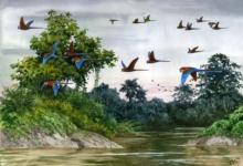 Выставка «Птицы и животные»
