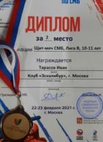 диплом кубка России по мечевому бою